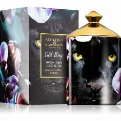 Ashleigh & Burwood London Wild Things Born With Cattitude vonná sviečka 700 g