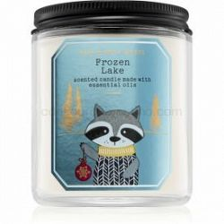 Bath & Body Works Frozen Lake vonná sviečka I. 198 g
