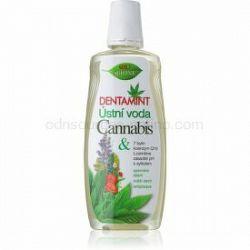 Bione Cosmetics Dentamint ústna voda mentol 500 ml