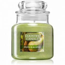 Country Candle Anjou & Allspice vonná sviečka malá 104 g