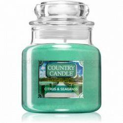 Country Candle Citrus & Seagrass vonná sviečka malá 104 g