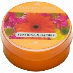 Country Candle Sunshine & Daisies čajová sviečka 42 g