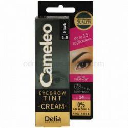 Delia Cosmetics Cameleo profesionálna krémová farba na obočie bez amoniaku odtieň 1.0 Black 15 ml