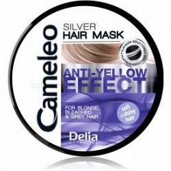 Delia Cosmetics Cameleo Silver maska na vlasy neutralizujúci žlté tóny 200 ml